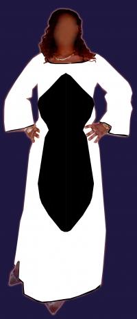 robe longue manche longue Bazin super riche ref  C-5019