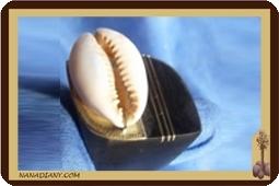 Ring ebony, bronze cowrie  Ref: EBC-1200