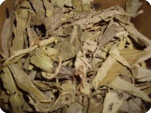 kenkeliba Sahel tea